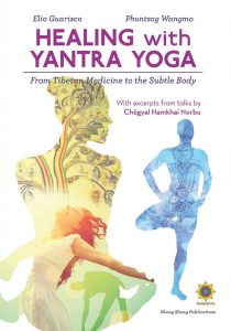 Curare con lo Yantra Yoga
