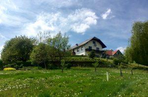 Mostra fotografica sui 40 anni <br> della Comunità Dzogchen Austria