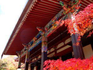 Ritiro di Chögyal Namkhai Norbu<br> a Kyoto, 2-6 settembre