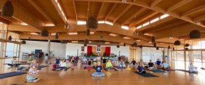 Yantra Yoga avanzato, <br>tutti i cinque Pranayama <br>con Fabio Andrico