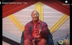 Pratica di Tara, video e pratica con Rinpoche