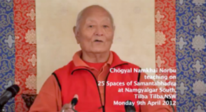 Traduzione delle registrazioni degli Insegnamenti di Rinpoche sui 25 Spazi