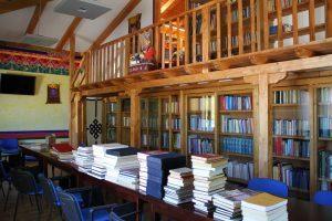 Un anno in biblioteca