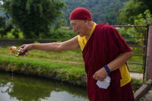SSI UK Liberazione dei pesci con Drugu Choegyal Rinpoche