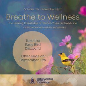 'Breathe to Wellness!' Corso online con Menpa Phuntsog Wangmo e Fabio Andrico