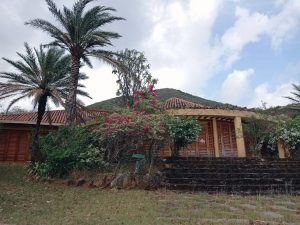 Notizie da Tashigar North, Venezuela