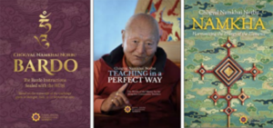 Aggiornamenti da Shang Shung Publications